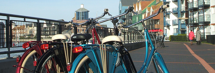batavus-bike-banner-dutch-littlehampton